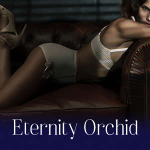 Eternity Orchid